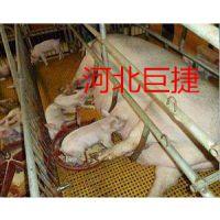 河北巨捷38*38*38养殖地面排水格栅@南平养殖地面排水格栅厂家