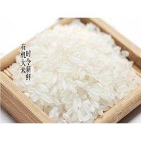 沈阳五常大米专卖店的价格多少钱一斤