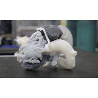 生物相容性CT核磁共振模型重建3D打印机