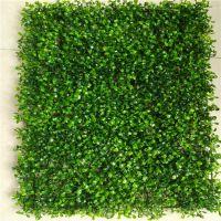浅绿色米兰草仿真植物墙,创意背景墙,加密绿植墙,广告墙,塑料草