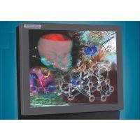 NuVision Perceiva DSD190 3D立体显示器