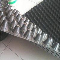 地下室排水板—2公分高塑料排水板(凹凸型板材)