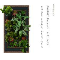 仿真植物相框的价格? 厂家直销假绿植墙 装饰客厅 卧室可来图定制