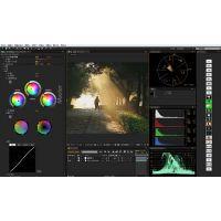 达芬奇调色软件正版多少钱,调色系统的安装使用视频教程