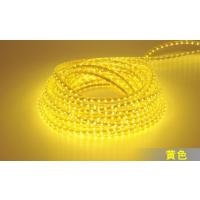 5050贴片led灯带 低压高亮120灯
