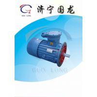济宁国龙 YBB17-4耙斗装岩机用电机 YBB30-4防爆电机