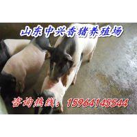 http://himg.china.cn/1/4_960_235488_600_400.jpg