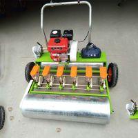 金佳机械谷物蔬菜播种机 四行电动小粒种子精播机 小型菜心播种机
