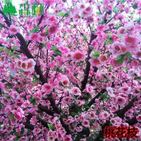 东莞森林工艺品厂生产仿真树假花树 绢花桃花枝橱窗布景仿真植物仿生花