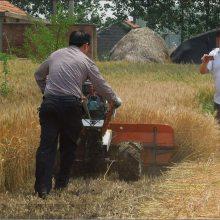 四轮前置高架玉米秸秆收割机 多功能养殖牧草水稻割晒机割台 视频