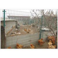 养殖围栏网|绿色铁丝网|浸塑养殖护栏网