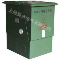 10KV高压电缆分接箱DFW-12 电缆分支箱