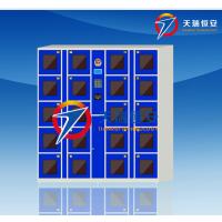 天瑞恒安 TRH-RL-106 定制型联网寄存柜,定制型联网储物柜