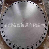 供应316L不锈钢 盲法兰DN700 RF CL600 盲板法兰 法兰盖 高压厚壁