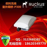 美国优科ZoneFlex P300室外网桥AP/Ruckus P300/901-P300-WW02