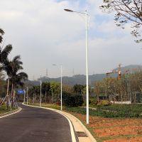 梅县道路灯杆灯臂 马路灯生产厂家 休闲广场LED灯杆攀爬式
