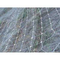 供甘肃球场围栏网和兰州边坡防护网