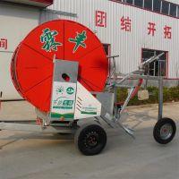 霖丰JP农业系列小型自动灌溉设备