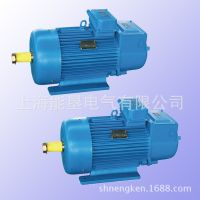 供应减速马达专线绕线转子电机YZR132M1-6 上海能垦起重冶金电机