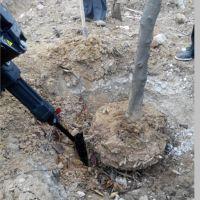 启航大马力铲树移植机 果园树林挖树机专用 汽油起树机价格