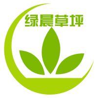 沧州绿晨人造草坪有限公司