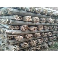 供应唐山优质竹片(2米、3米、4米、5米、6米)-腾福竹木