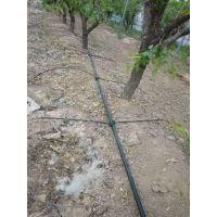 果树滴灌小管出流 果树滴灌系统