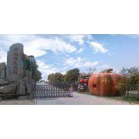 专业承接景观雕塑 塑石假山 仿真假树 仿木亭廊设计施工