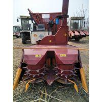 新品多功能140玉米秸秆青储机 牧草收割机 皇竹草收获机 麦秸秆捡拾打捆机厂家销售