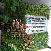 东莞紫萱厂家直销 仿真植物墙 人造假绿植墙 米兰草坪 园林景观