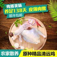 广州天农清远鸡-清远鸡批发|凤须土鸡专卖店