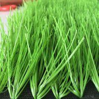 山东厂家直销足球场专用单丝加筋足球草人造草坪厂家