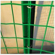 浸塑荷兰网 防护围网 圈鸡铁丝网