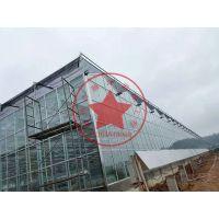 现代化钢构玻璃智能温室大棚—青州瀚洋温室