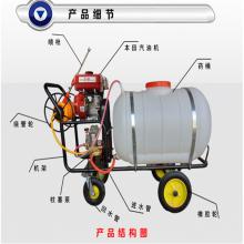 太原远射程高压喷雾机 农用病虫害防治喷雾机 白菜打药喷雾器