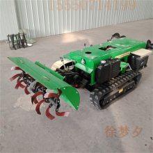 广东滚筒式辣椒播种机 拖拉机带向日葵精播机 耐用高效率棉花播种机