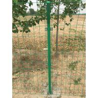 澳达网业 现货双边丝围栏网 无边框金属丝焊接栅栏 浸塑铁丝网