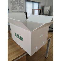 【钙塑箱江门周转箱包装厂】食品级材质坚固耐用