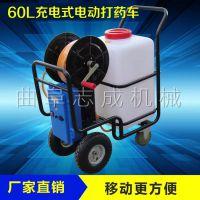 志成农用电动喷雾器 大棚推车式打药机 小型电动洒水车