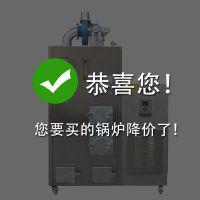 旭恩室燃炉50KG生物质蒸汽发生器公司