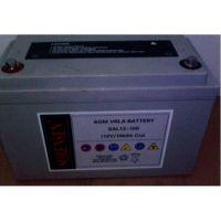 美国索润森蓄电池12V -100AH陕西总代理现货报价