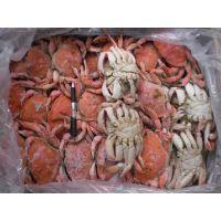 世云制冷商家要想螃蟹新鲜就不放箭一个冷冻库螃蟹保鲜库