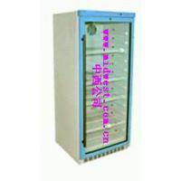中西 恒温柜 型号:FY12/YS-280L 库号:M402046