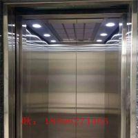 高端大气别墅电梯 曳引机简易家用乘客电梯厂 家定制直销