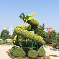 新园五色草观叶立体造型-龙001