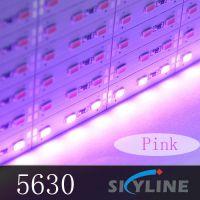 粉色led灯箱灯条5630硬灯条72灯珠12v低压珠宝柜台地摊货源批发
