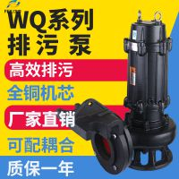 铸铁无堵塞排污泵 工程配套专用泵