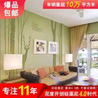 内墙环保涂料泥度硅藻泥儿童房装修的两点注意事项