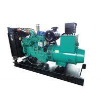 专业OEM220kw康明斯柴油发电机