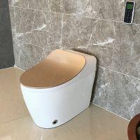 全自动即热式智能陶瓷马桶土豪金多功能新款家用酒店座便器